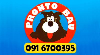 TOELETTATURA PRONTO BAU