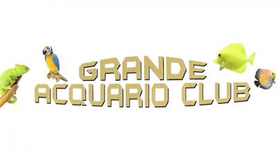 GRANDE ACQUARIO CLUB